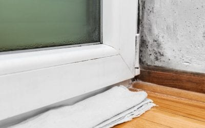 8 Ways to Prevent Mold Growth in Your Home
