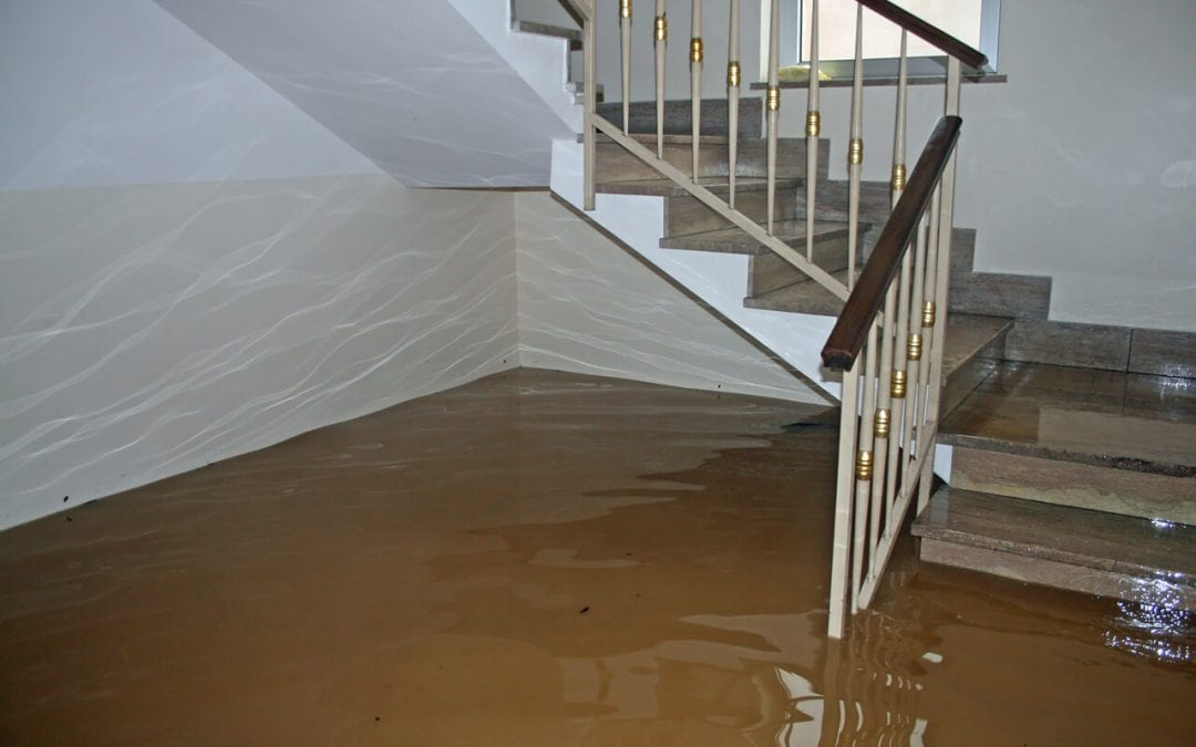 4 Ways to Protect Against Residential Water Damage